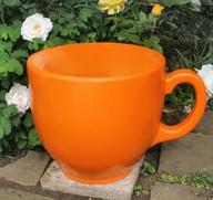Holly Palmer - tea c
