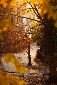 Autumn......