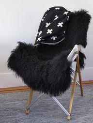 Black Mongolian Shee