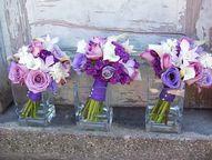 Dark Purple lisanthi