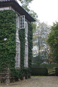 ivy exterior
