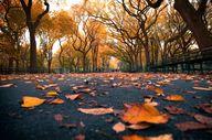 Central Park, Mall A