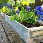 Card catalog planter