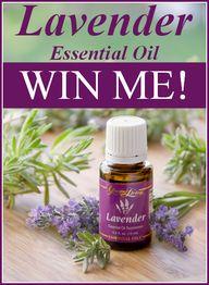 Lavender Essential O