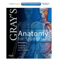 Gray's Anatomy for S