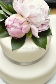 Small wedding peony