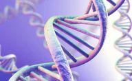 Individual Genes res