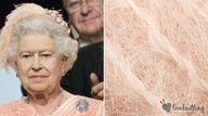 The Queen. Celebrity