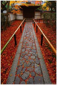 Fall in entrance to