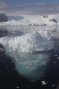 Iceberg in Antarctic