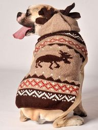 Moosey Dog Sweater w