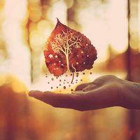Items similar to L'automne est un deuxième printemps on Etsy