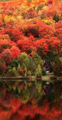 Cozy cabin in the Laurentian Mountains of Quebec, Canada • photo: Alan Marsh on Designpics | @explorecanada