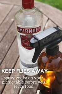 I used tip #1 to keep flies away and it worked like a charm!