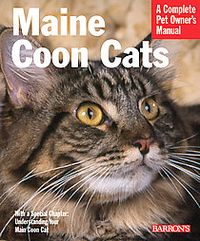 Maine Coon Cats (Paperback) | Overstock.com Shopping - The Best Deals on Cats