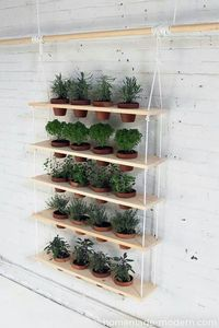 10 DIY Vertical Garden Ideas