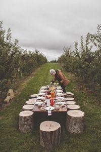 Fall vineyard wedding. Feast, Thanksgiving styling, decor, inspiration