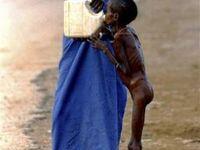 Şiddet,Açlık,Acı (Other Face of World)
