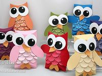 Owls Rock!