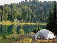 Outdoor, camping, tips, animals in Sweden,