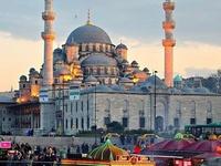 Exotic Turkey