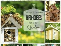 Birds, butterflies and bees! Attract them to you gardens!