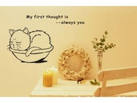 Lovely birds and animal wall stickers