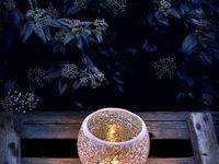 Candles ~ Lights