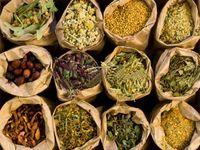 Herbal and Alternate Medicines