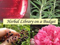 Remedies, herbals, traditional medicine