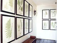 Botanical & Nature Prints