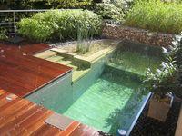 Natural Swim Ponds