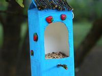 We love birds - ideas and kid crafts for bird watching.