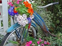 Gardens and gardening!