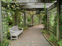 Garden and backyard ideas