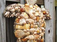 Shells, beach glass & drift wood