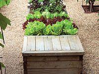 Bucket List: Garden