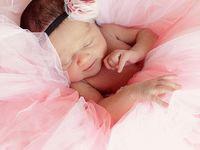 Photog Newborn