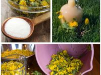 Herb crafts, recipes and uses