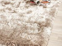 -The Carpet-