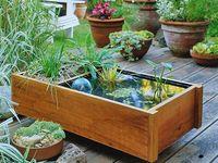 Greenhouse Gardening Goodies