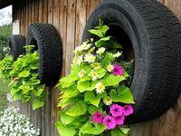 Tires...it's my life.