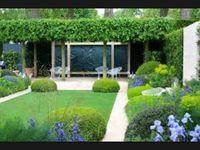 Telegraph Garden Chelsea 2014