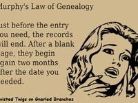 """Ancestry - """"Murphy's Law"""""""