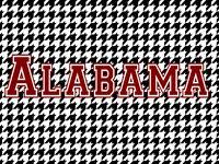 alabama crimson tide (rtr!!!)