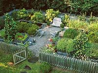 A Board for landscaping ideas, vege garden ideas, composting, storage, chickens, plants and any other hints and tips to do with the yard