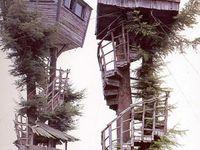 Like a Bird..Tree houses!!!!Or......
