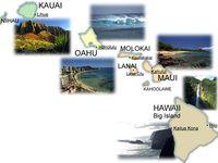 Christmas in Hawaii!!