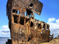Shipwrecks & other skeletons of the sea