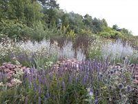 Gardens by Piet Oudolf